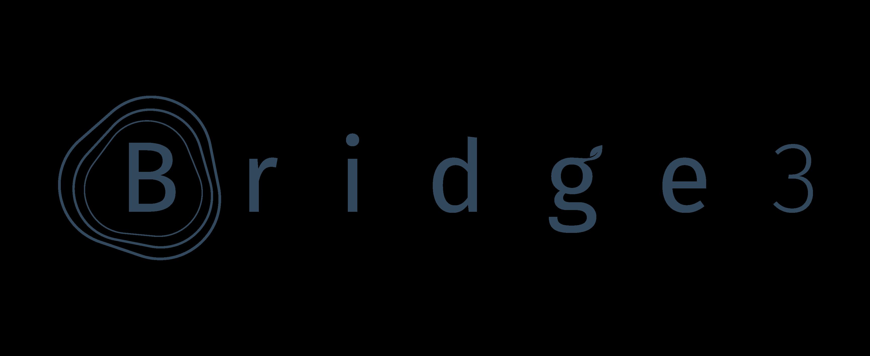 Bridge3 Gestão Sustentável